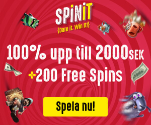 An image of the Spinit banner