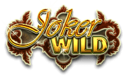 An image of the Joker Wild Logo